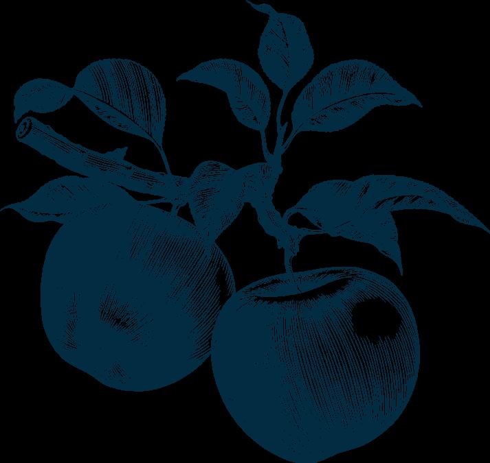 Image de pommes en dessin